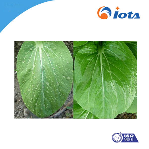 Powder Agricultural Silicone synergist IOTA2001